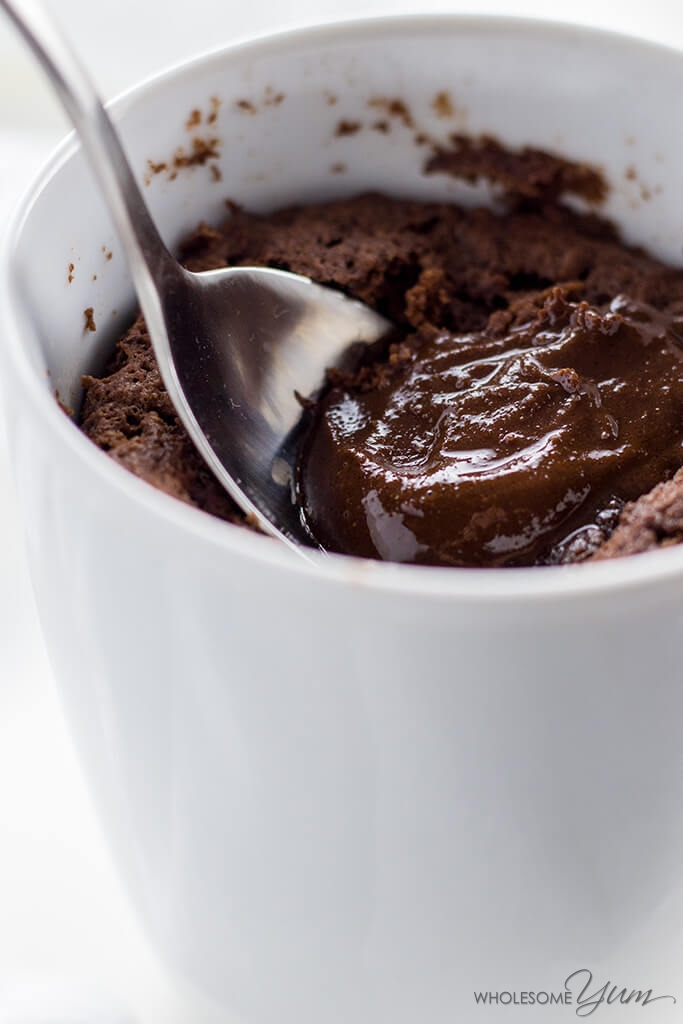 Nutella Mug Cake Recipe Molten Lava Cake Low Carb Paleo