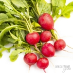 Bunch of radishes that are keto friendly