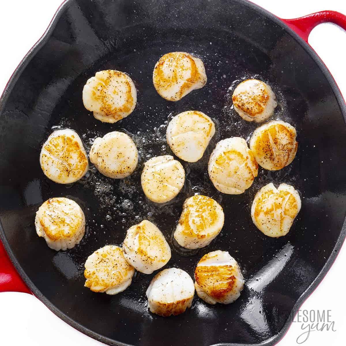Seared sea scallops in a skillet